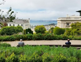 Danh sách các địa điểm dã ngoại tốt nhất ở San Francisco